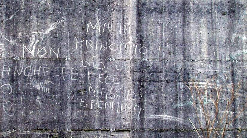 MA IN PRINCIPIO DIO LI FECE MASCHIO E FEMMINA