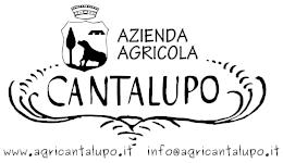 Logo cantalupo